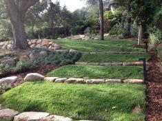 grass steps 3