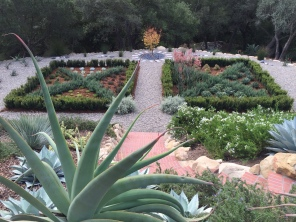 Formerly grass, now knot garden