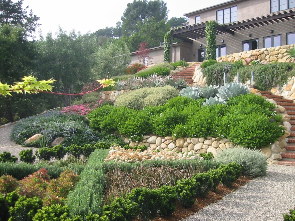Looking up tiered slope garden landscaping water wise for Garden design on a slope